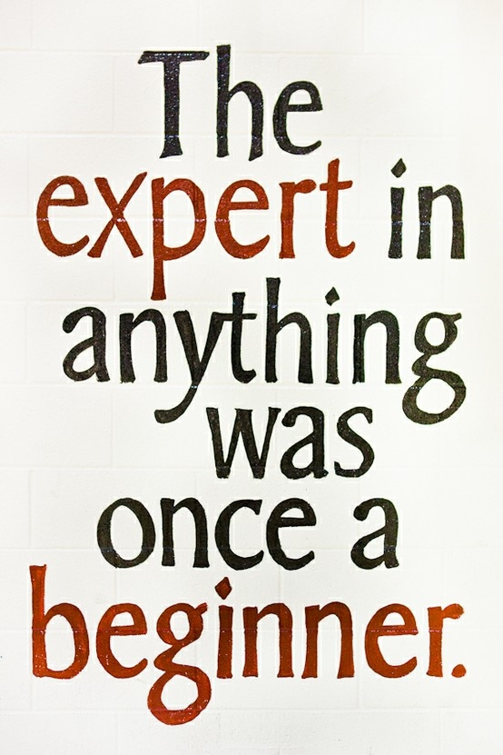 the-expert-in-anything-was-once-a-beginner